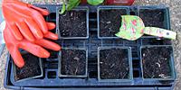 Environmental Education STEM / Fertilizer