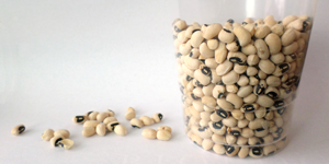 Explore the science of making soup from dried beans  / Hand-on STEM experiment