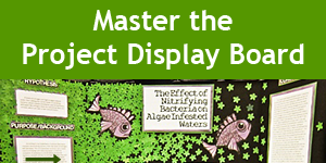 Mastering the Project Display Board