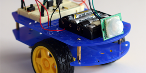 Build a BlueBot Guard Robot