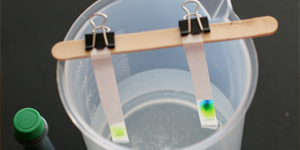 Green Candy Chemistry / Chromatography project and kit for dye exploration with candies