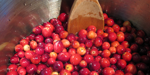 A Saucy Thanksgiving / Cranberry Sauce and Gravy Science Experiments