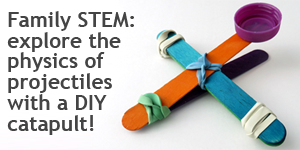 Simple Catapult Science / Weekly Family STEM Experiment with Energy and Physics
