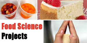Food Science Projects for K-12 Students