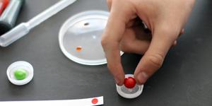 Valentine's Day STEM Activity / Candy Color Chromatography