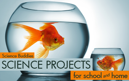 Weekly Science Project and Science Activity Spotlight